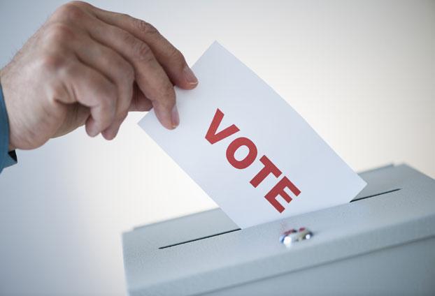 [Image: vote.jpg]